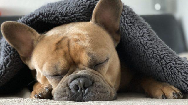 good_sleep