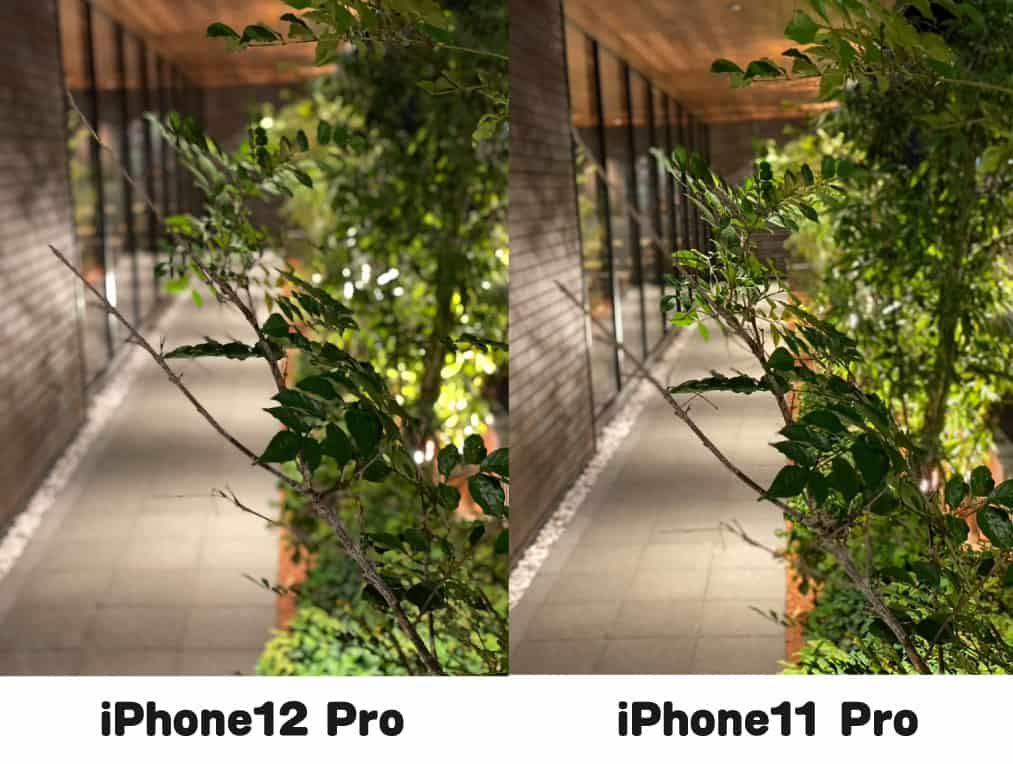 iPhone12Pro_test